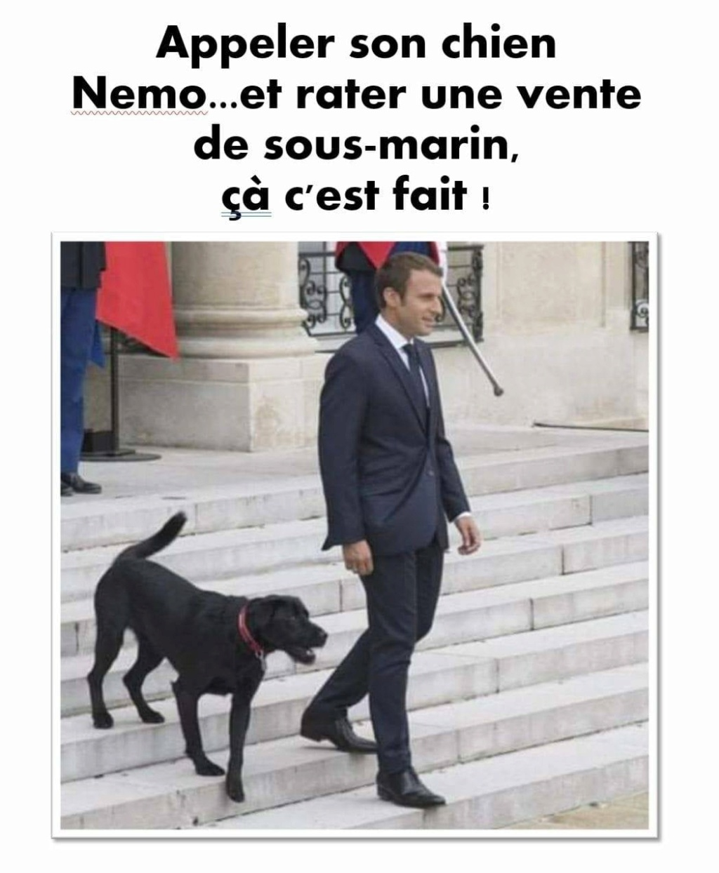 humour - Page 10 24264510