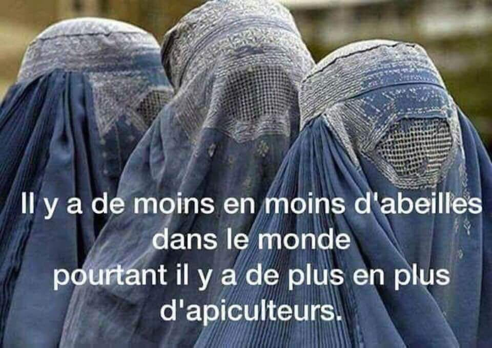 humour - Page 17 39940210
