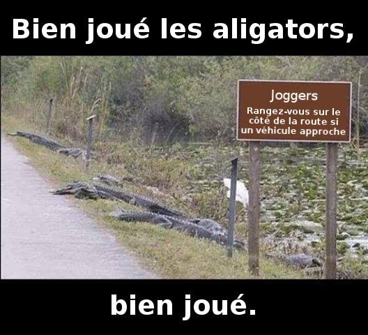 humour - Page 34 56398310
