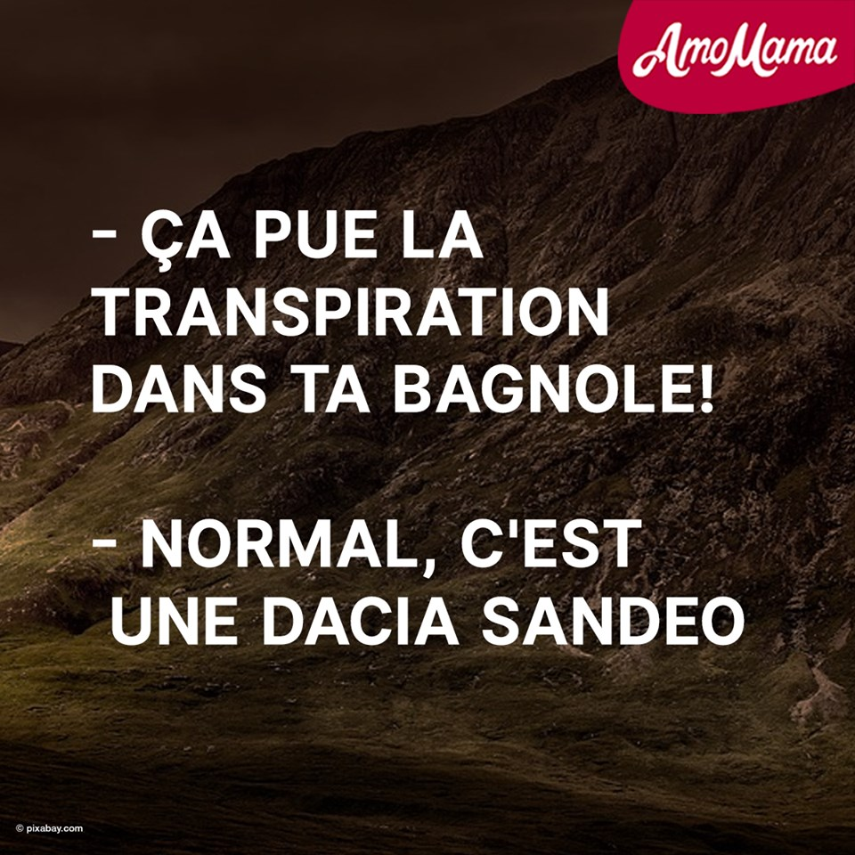 humour - Page 23 61409910