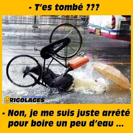 humour - Page 23 64442710