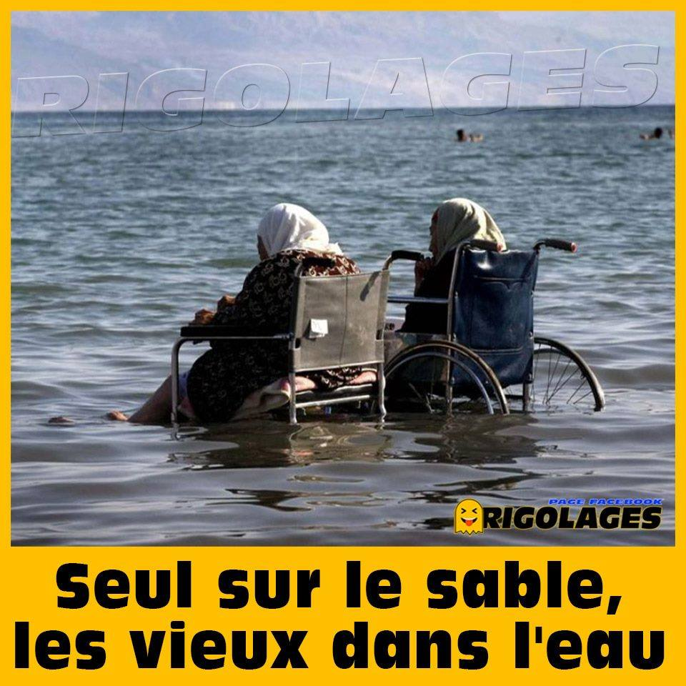 humour - Page 23 64448910