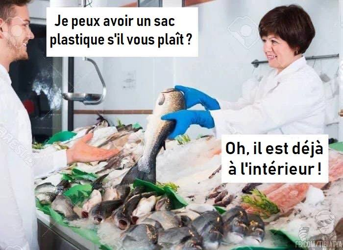humour - Page 23 64677810