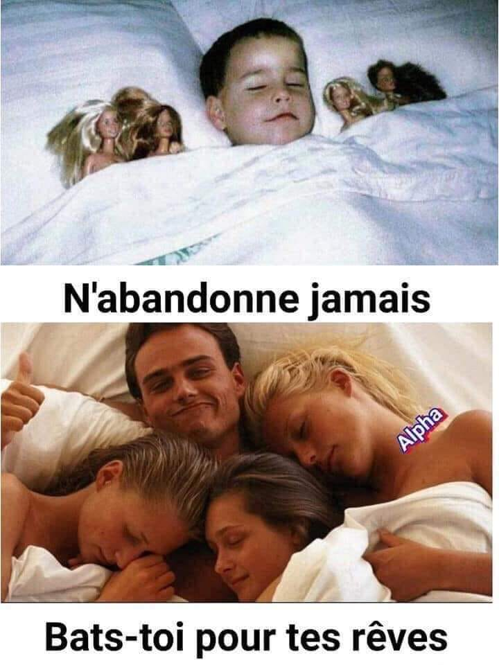 humour - Page 27 66631810