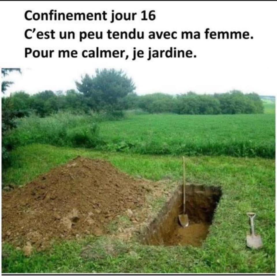humour - Page 35 73364210