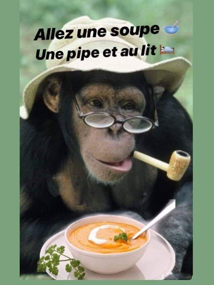 humour - Page 29 79437310