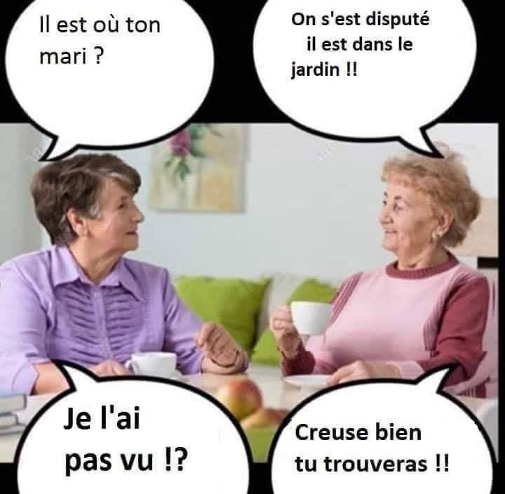 humour - Page 32 87537110