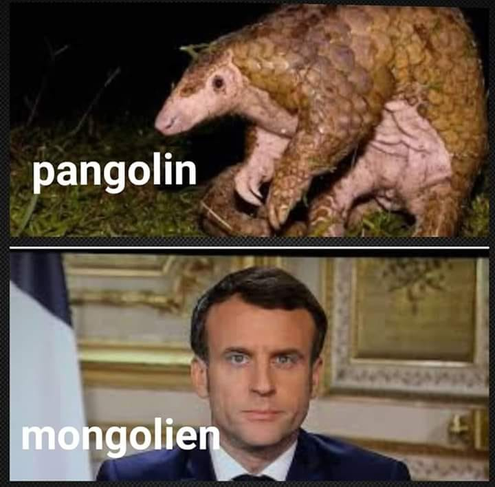 humour - Page 37 92128010