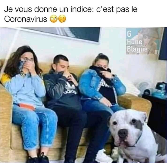 humour - Page 37 92153110