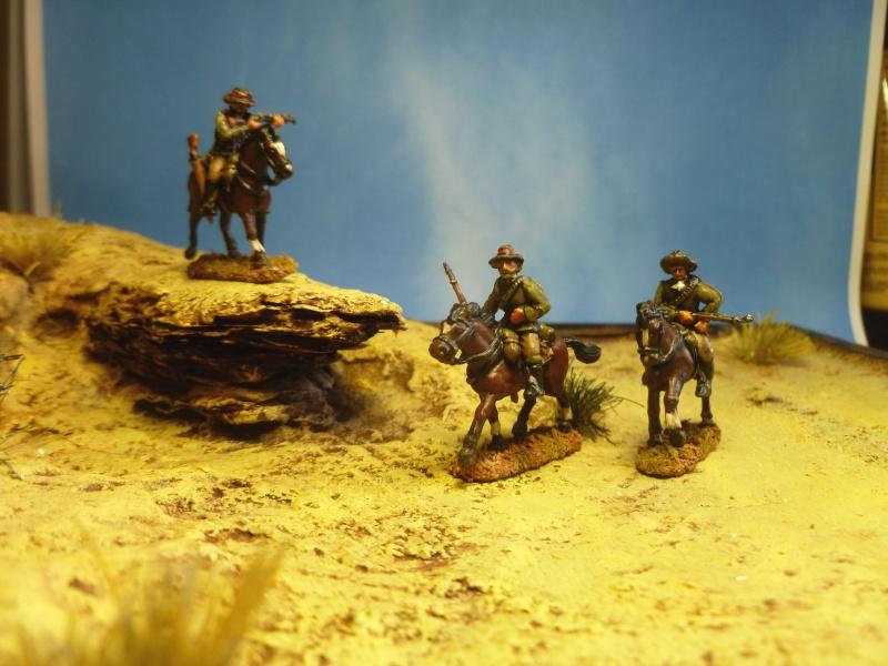 Frontier Light Horses au 1/72. - Page 2 P1040850