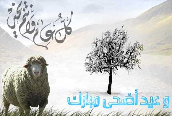 aid ad7a mobarak  Aid10