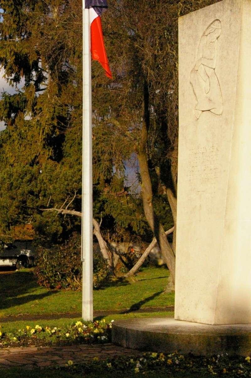 GRUSSENHEIM (26 janvier 2014): au monument aux morts Grusse21