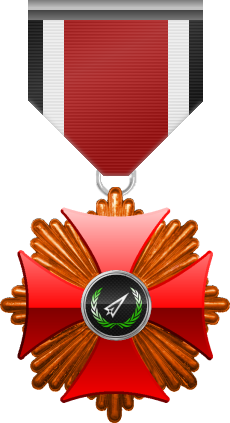 Bronze level of the Red Cross of the Silver Arrows - This award is given to a member who participated in a number of assignments in hostile territory. Bronze level is the first of six.