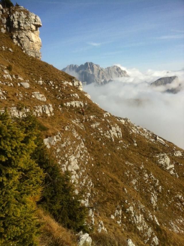 Dolomiti - Pale di San Lucano - Pagina 2 Foto_110