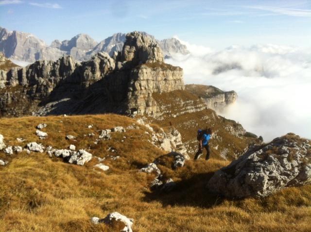 Dolomiti - Pale di San Lucano - Pagina 2 Foto_410