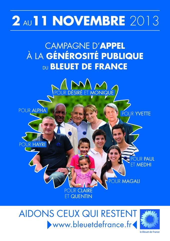 Bleuet de France 13840810