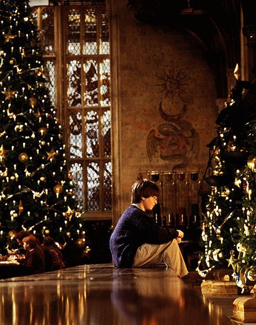 sapin, décos Noël HP Tumblr10