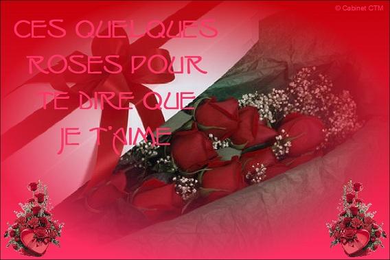 Carte postale Saint-Valentin - 11 Saint-20