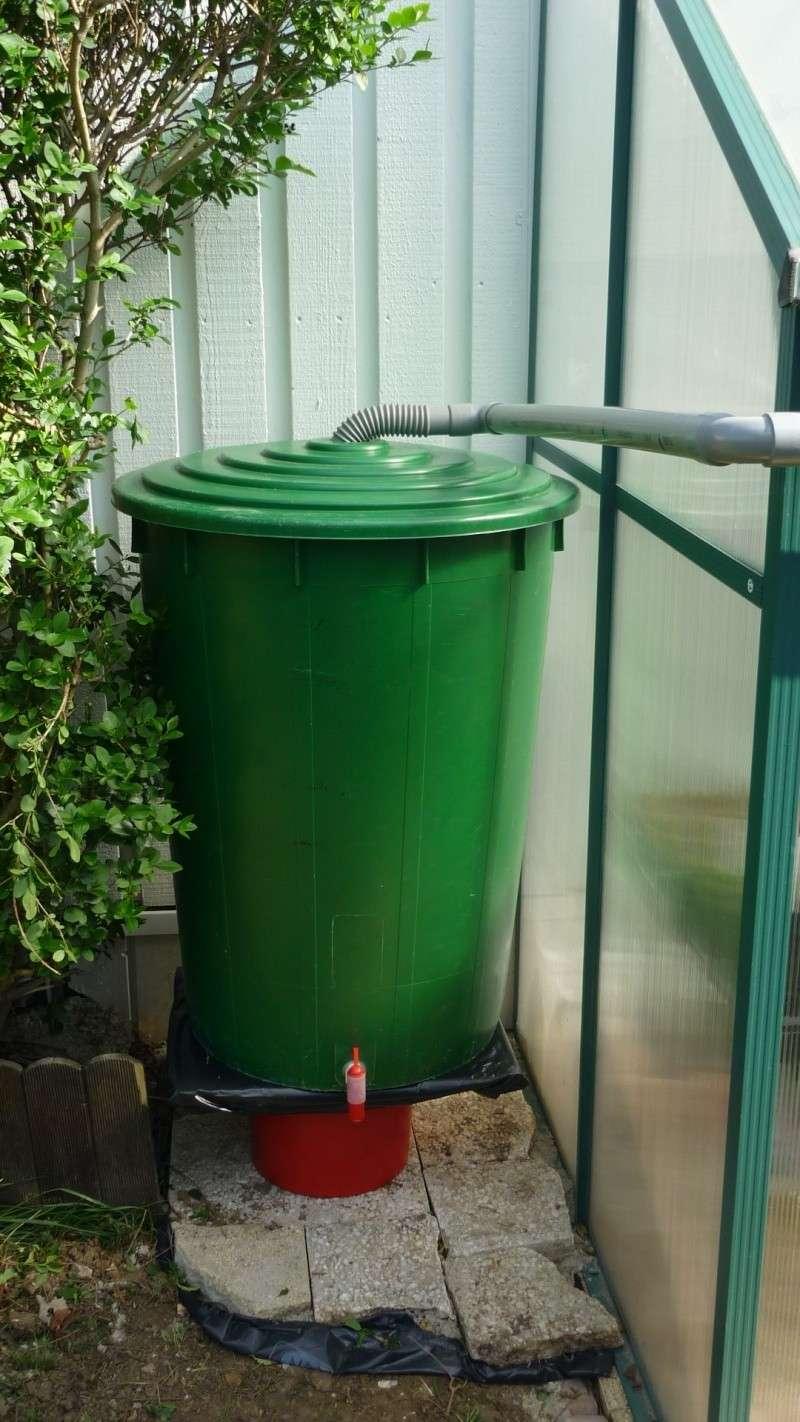 Petite serre + recuperation d'eau P1110237