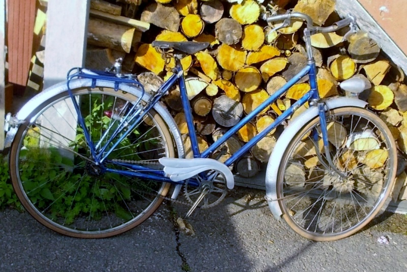 Cycles PETROGNANI   1950 cadre anglais  2014-640