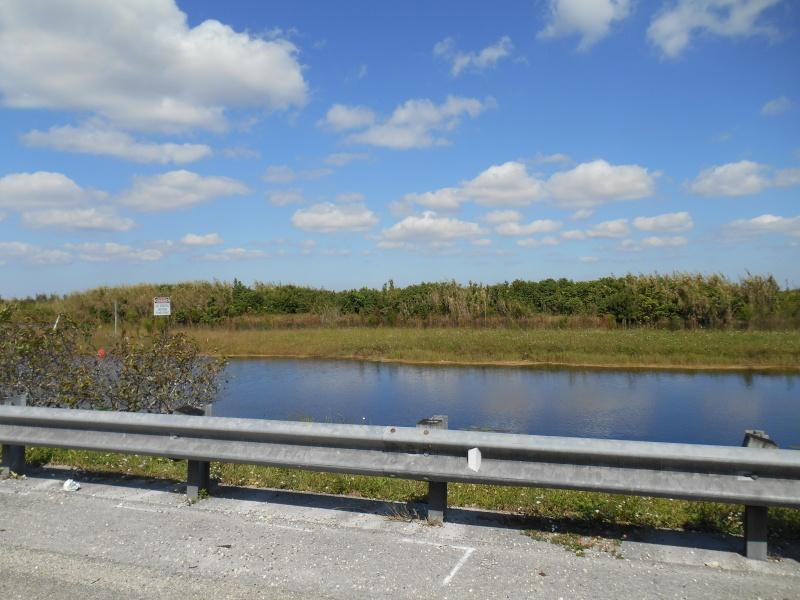 Pré TR +TR Page 3: Floride, WDW et universal octobre 2013 - Page 4 Dscn0316