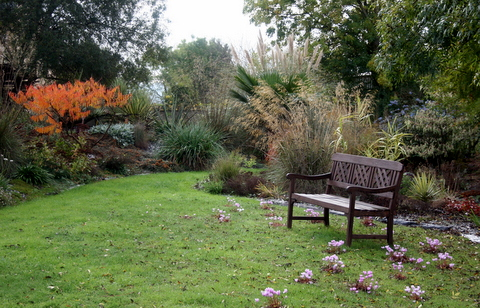 Jardin du moulin neuf automne octobre Img_1316