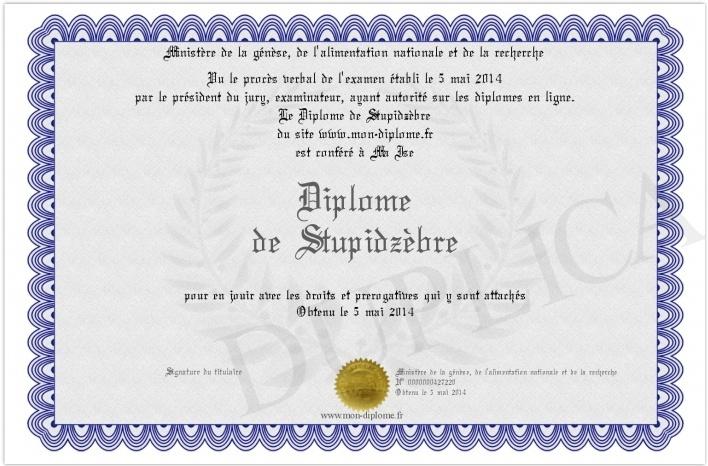 """Les """"Stupid Zèbres"""" c'est nous... - Page 5 Diploz10"""