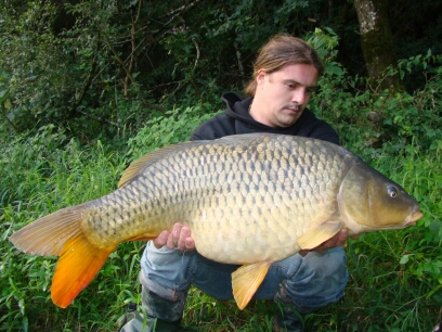 Un poisson,une histoire... Dsc05010