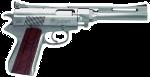 Firearm Transactions _457_w10