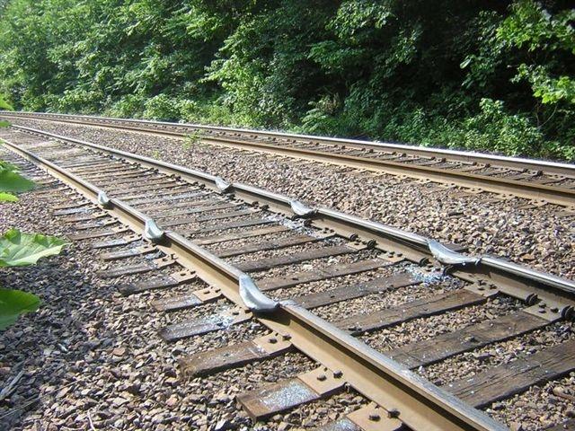 RigolonZunbrin Rail_b10