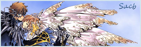 Comment classez-vous vos mangas dans votre mangathèque ? Signsa10