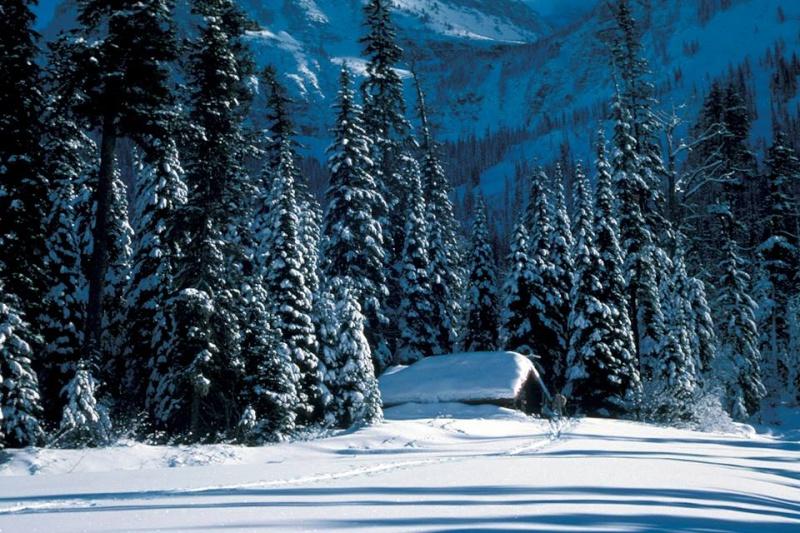 A Winter Poem from Glacier National Park 10059910