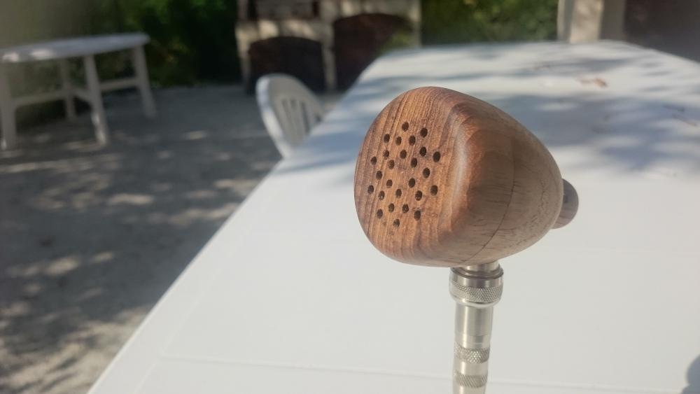 Micro harmonica en bois Dsc_0018