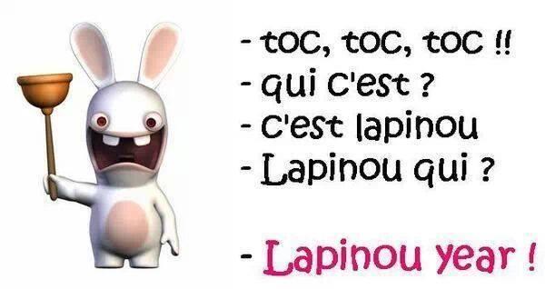 Lapinou year 14829010