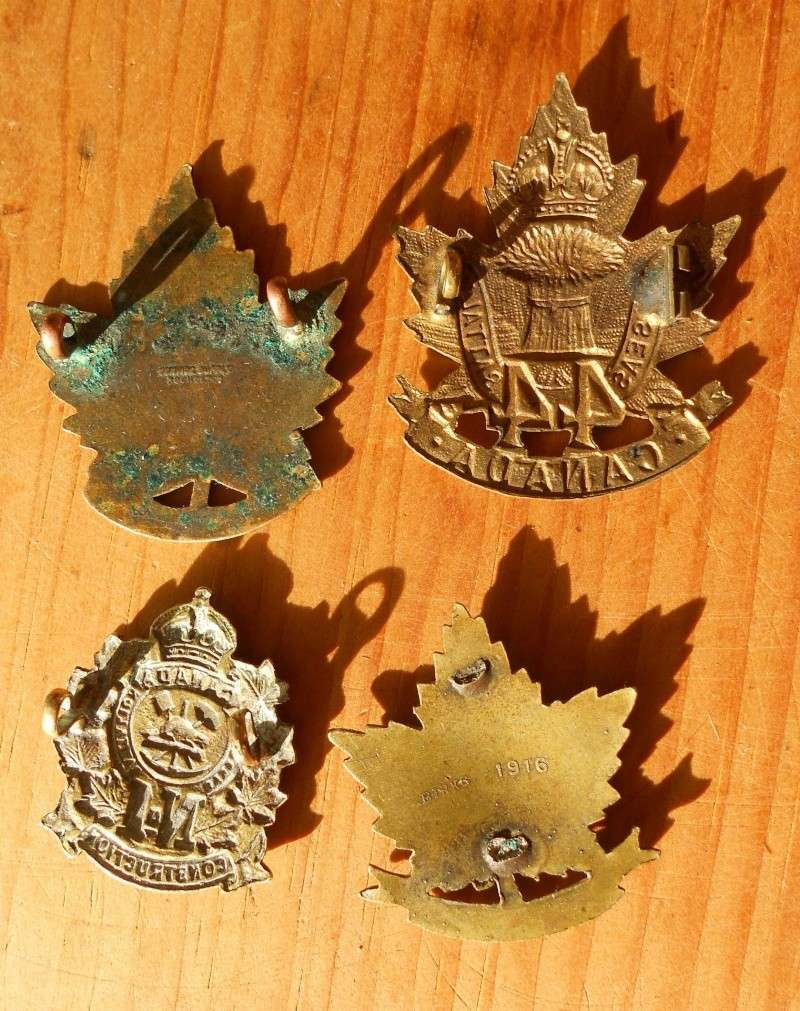 Looking for CEF Cap badge with Slider  00611
