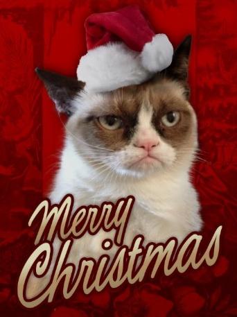 Le père Noël ammène sa hotte remplie de cadeaux pour tous les enfants sages! Kimiki10