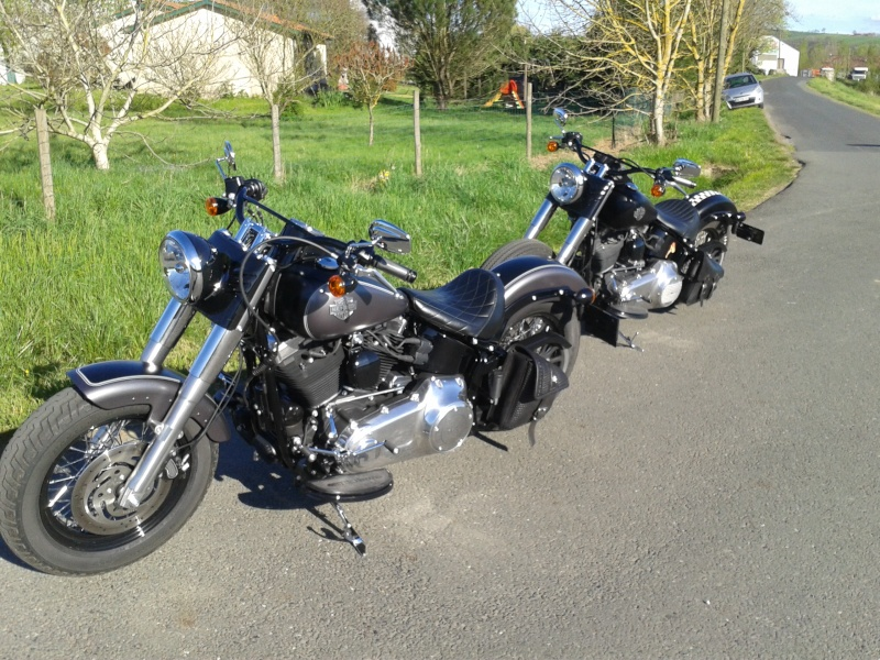 Softail Slim sous tous ses angles ! - Page 3 2014-037