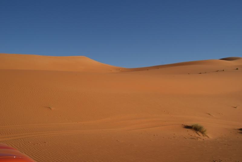 J'adore l'Afrique et ses déserts je souhaite beaucoup apprendre de vous. Dsc00810