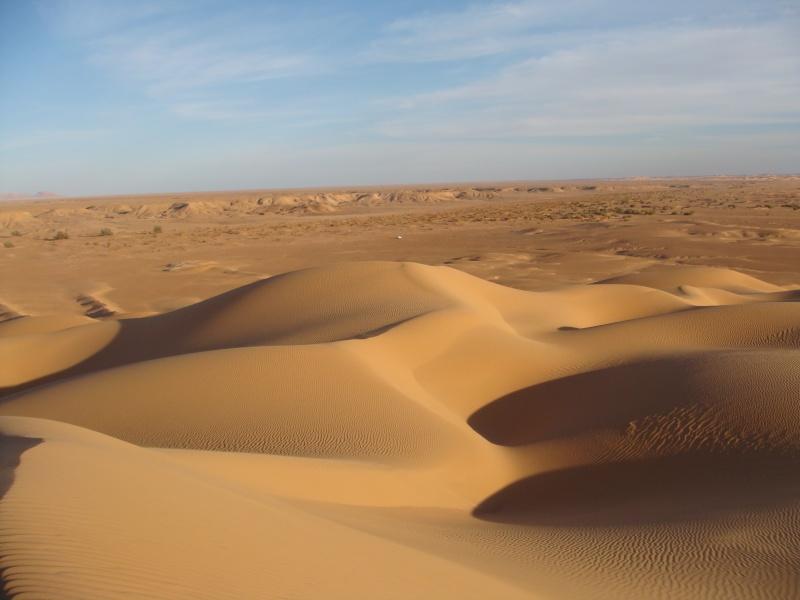 J'adore l'Afrique et ses déserts je souhaite beaucoup apprendre de vous. - Page 2 Dsc01412