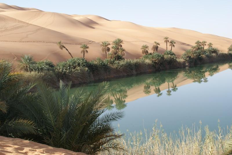 J'adore l'Afrique et ses déserts je souhaite beaucoup apprendre de vous. Dsc01610