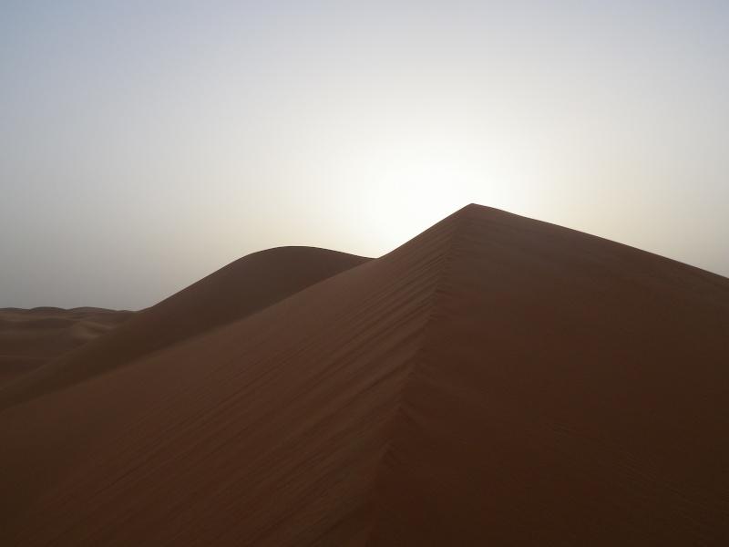 J'adore l'Afrique et ses déserts je souhaite beaucoup apprendre de vous. Imgp0211