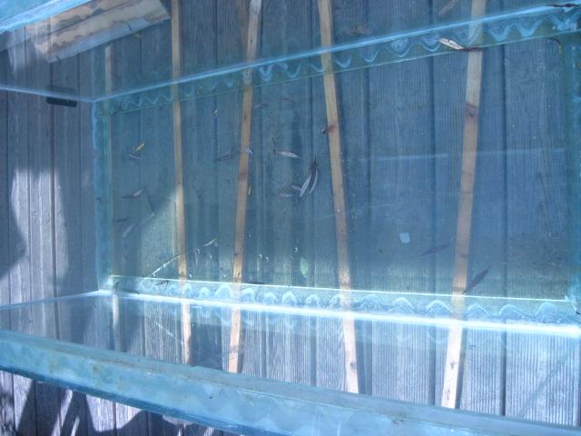 réparation vitre de fond félée 600 litres Img_0310