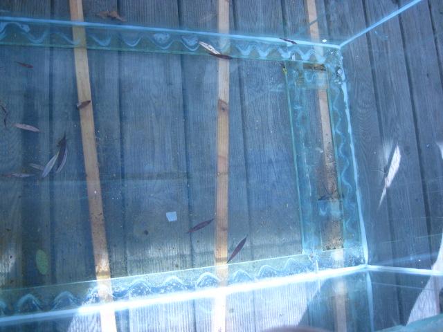 réparation vitre de fond félée 600 litres Img_0311