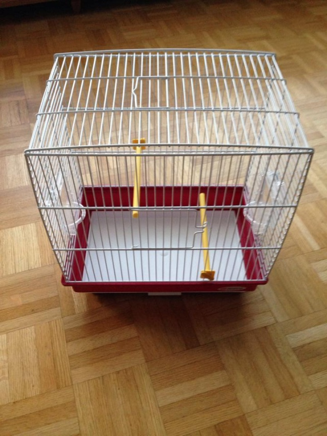 Vente cages (Belgique - Bruxelles) 14229310