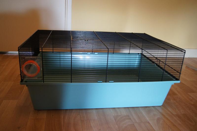 Vend cage + accessoires (63) Dsc03215