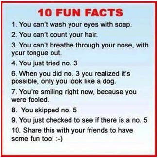 Funny Pics / Funny Stories - Page 12 Temp1511