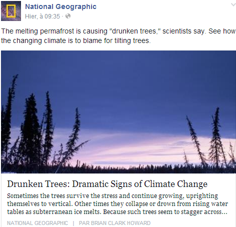 Drunken Trees: Dramatic Signs of Climate Change Temp2058