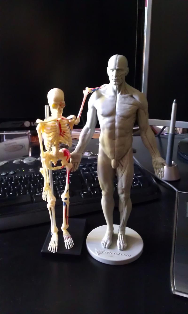Figurines de référence 2013-111