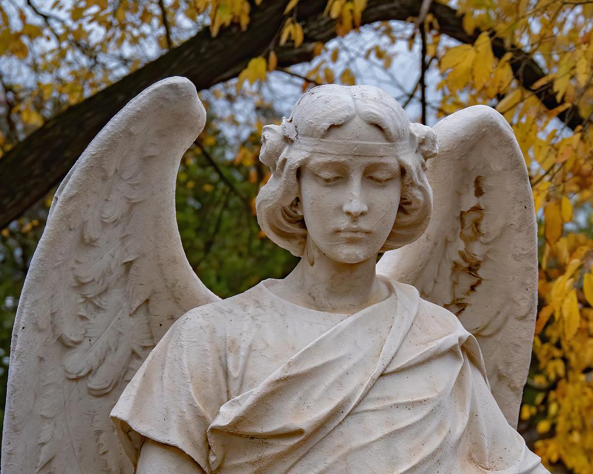 """L'Ange de l""""Automne... 49067710"""
