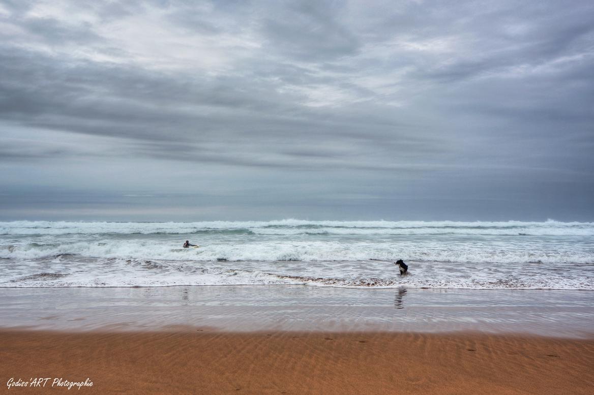 Le surfeur et le chien Imgp5315